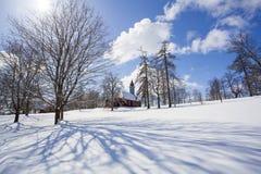 Bomen met rijp en sneeuw worden behandeld die Stock Foto's