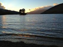 Bomen in midden van Loch Stock Foto
