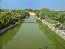 Bomen naast waterkanaal stock afbeeldingen