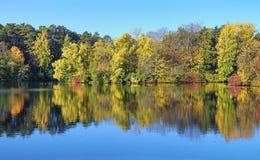 Bomen op de kust van meer in de herfst Royalty-vrije Stock Foto
