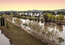 Bomen op de rivier van Guadiana Royalty-vrije Stock Foto