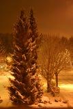 Bomen op de sneeuwstraat Stock Foto's