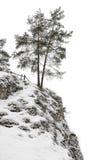 Bomen op geïsoleerde heuvel, Stock Afbeelding