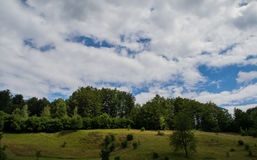 Bomen op heuvel Stock Foto's