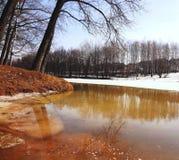 Bomen over de de lenterivier De lentevloed Royalty-vrije Stock Afbeelding