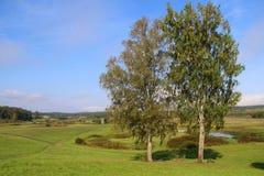 Bomen in park zes Royalty-vrije Stock Afbeeldingen