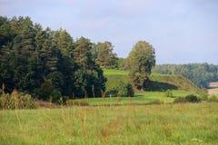 Bomen in park zeven Royalty-vrije Stock Foto's