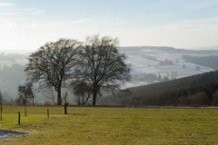 2 bomen in vallei Royalty-vrije Stock Foto's