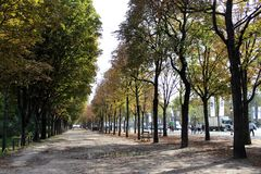 Bomen van een park van Parijs Stock Fotografie