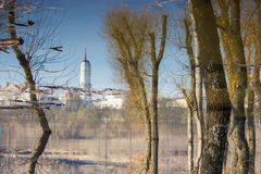 Bomenbezinning over water. Stock Foto