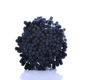Bomullspinnar, bomull, svart-färg Arkivfoton