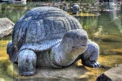 Bomun-Wasser-Rad-Schildkröte Stockbild