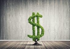 Bon investissement pour obtenir le revenu Photo stock
