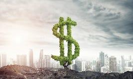 Bon investissement pour obtenir le revenu Photographie stock libre de droits