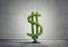 Bon investissement pour obtenir le revenu Image libre de droits