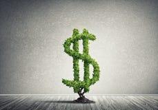 Bon investissement pour obtenir le revenu Photos libres de droits