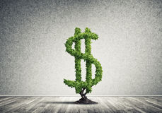 Bon investissement pour obtenir le revenu Images libres de droits