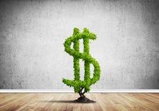 Bon investissement pour obtenir le revenu Photo libre de droits