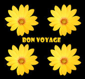 Bon voyage. Abstract creative floral  greeting scene Royalty Free Stock Photography