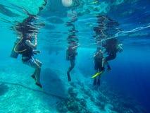 Bonaire Royalty Free Stock Photos