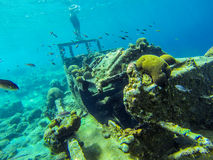 Bonaire Stock Images