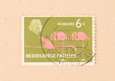 A stamp printed in Bonaire shows a flamingo, circa 1966. BONAIRE - CIRCA 1966: A stamp printed in Bonaire shows a flamingo, circa 1966 royalty free stock photography