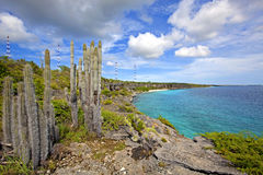 Bonaire coastline. View over the beautiful coastline on Bonaire royalty free stock photos
