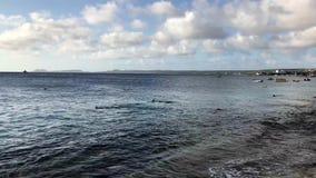 Bonaire coastline stock video footage