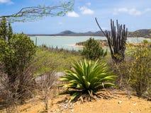Bonaire = Gotomeer Lake viewpoint Royalty Free Stock Photos