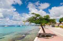 Bonaire-Jachthafen