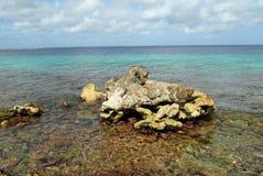 Bonaire linia brzegowa Obrazy Stock