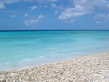 Bonaire Ocean View. With coral beach Royalty Free Stock Photos