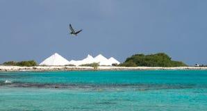 Bonaire salt pans Stock Image