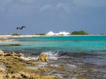 Bonaire salt pans Stock Photography