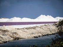 Bonaire salt pans Stock Images