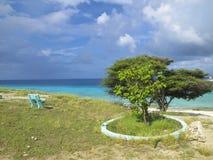 bonaire seashore Fotografia Royalty Free