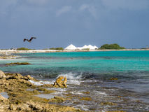 Bonaire soli niecki Fotografia Stock