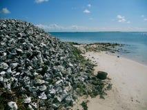 Bonaire strand Fotografering för Bildbyråer