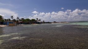 Bonaire wyspy morze karaibskie windsurf laguna Sorobon Zdjęcia Stock