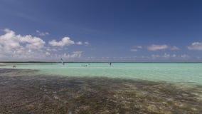 Bonaire wyspy morze karaibskie windsurf laguna Sorobon Zdjęcia Royalty Free