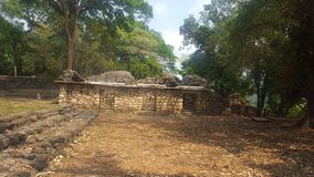 Bonampak废墟 免版税库存照片