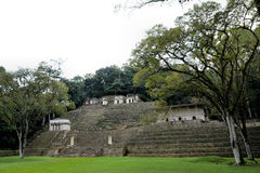 Bonampak Stock Photos