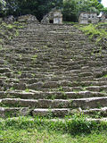 Bonampak Ruins Grey Steps Stock Photos