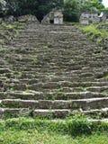 Bonampakruïnes Grey Steps stock foto's