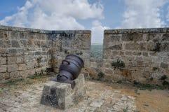 Bonaparte's cannon Stock Photos