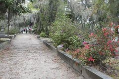 Bonaventure Cemetery on a Rainy Day Royalty Free Stock Photography