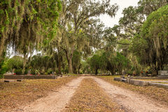 Bonaventure Cemetery in Savannah, Georgia. SAVANNAH, GEORGIA - JANUARY 17, 2015 : Historic Bonaventure Cemetery in Savannah, Georgia. This cemetery was featured royalty free stock image