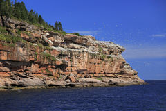 Bonaventure Island in Gaspesie, Canada Royalty Free Stock Photos