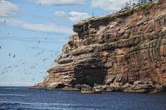 Bonaventure wyspa zdjęcia royalty free