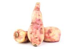 bonbon à pomme de terre Photographie stock